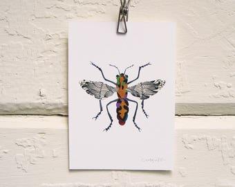 Walking a Fine Line Moth Print