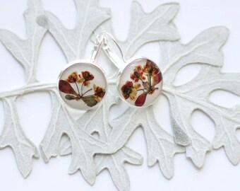 Pressed flower earrings gift for mom Real flowers resin earrings Romantic earrings mother gift from daughter