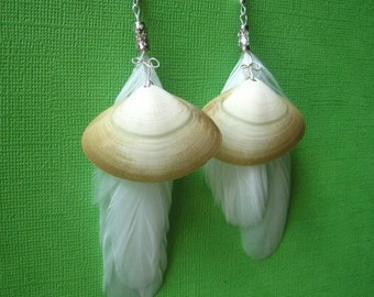 Sea and Sky Earrings: White Coque Feathers and Lined Tellin Seashells