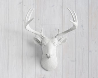Faux Mini Deer Head Wall Mount - Wall Charmers™ - Free US Shipping - Faux Taxidermy Gallery Wall Decor - Faux Deer Head - Dear Head Decor