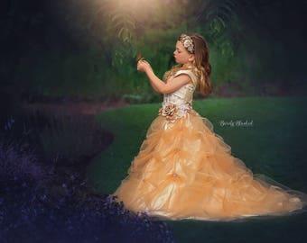 Beautiful Belle... A Stunning Princess Gown