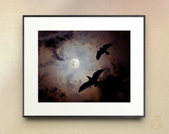 Raven art print - Raven Photography - Black Bird art - Full Moon photography - Night Sky art print - spooky art print - raven wall art