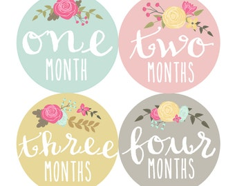 Baby Girl Month Stickers Monthly Baby Stickers Milestone Baby Month Stickers Baby Girl Vintage Floral Baby Shower Gift (Cursive Floral)