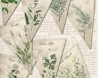 Printable Herbal Banner Bunting party banner herbs rosemary thyme lavender sage instant download digital collage sheet - VDBAVI1383
