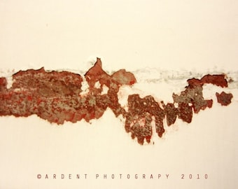 Abstract Red Cream Wall Art Room Decor Rust Odd Pattern Shape Form - Consumption a Fine Art Photograph from the Art of Boredom Series