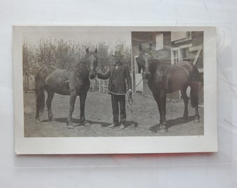 RPPC Man Standing w/ 2 Horses. Great Condition.