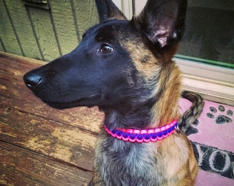Dog Collar - Custom Paracord Collar - Two Colors