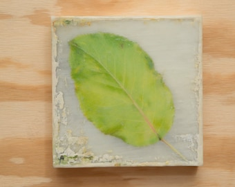 Leaf Art Photo Encaustic Original Art 8x8