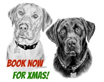 Pet Portrait Custom Christmas Gift Order Please Message Me Before Purchase