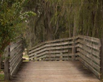 Long wooden bridge with trees hanging down digital background/digital backdrop