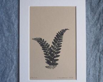 Botanical monoprint: Ferns