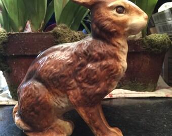 Large Primitive rabbit