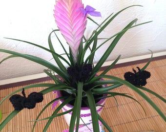 1 Lot de 3 appliques papillons 3D au crochet, noir
