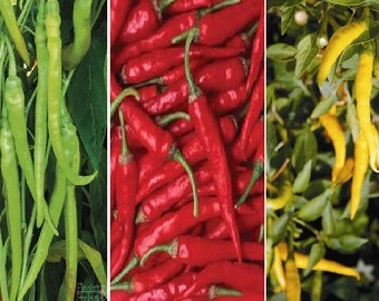 Pepperoni pepper (3 variety)