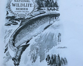 1956 National Wildlife Series/Chinook Salmon/Art Master Cachet