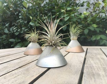 Sleek Cement Cone - Air Plant Vessel