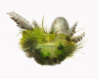 "Moss Nest- Archival print, nature art, cottage chic, nature 11 x 17"""