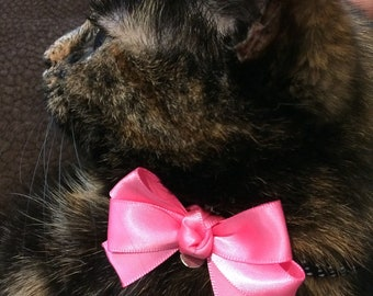 Dog or cat bow collar clip that can be worn anywhere on your pets collar.