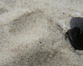 beach sand,magic sand,beach sand jewelry,beach wedding,ocean,sand pendant,sand necklace,sand jewelry,beach necklace,beach decor,craft supply