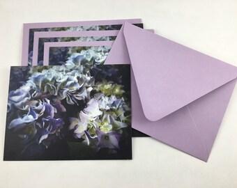 Virginia Hydrangeas in Purple Majesty