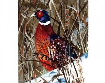 Father's Day, Gift for Dad, Pheasant Notecards     No. 648   Ring-necked Pheasant