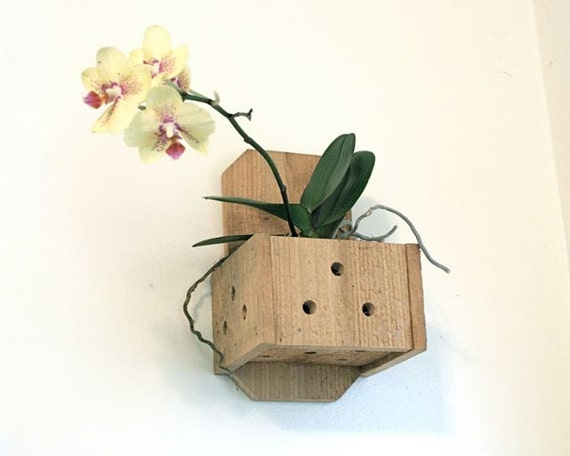 Wall Planter Hanging Wood Plant Box Orchid Pot Wooden Hanger