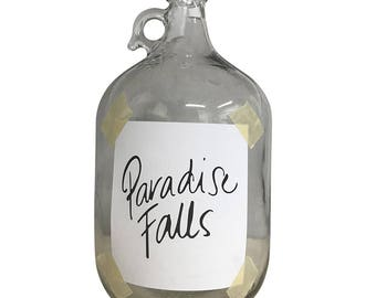 Paradise Falls UP Jar Replica, Honeymoon Fund, Wedding Decor, Vacation Fund