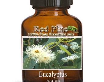 Eucalyptus Essential Oil - Eucalyptus globulus - 100% Pure Therapeutic Grade