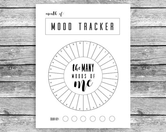 monthly mood tracker circle fits happy planner mini mood