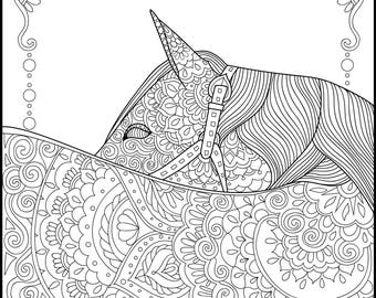 Horse Lover - Adult Coloring Pages - Coloring for Adults - Printable Coloring Pages - Gifts for Her - Horses - Flower Coloring-Coloring pack
