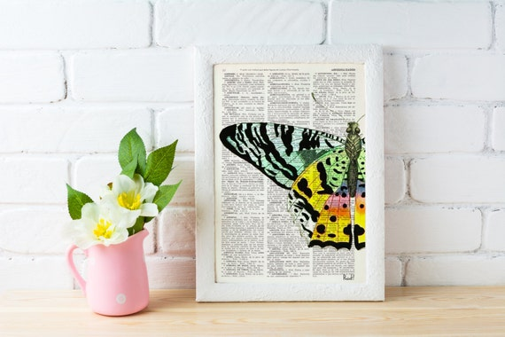 Butterfly Art Print Digital Illustration Poster Print Art Wall Hanging Hand painted Butterfly Dictionary gift BFL102