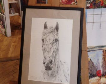 CUSTOM HORSE PORTRAIT, Equestrian Art, Graphite pencil drawing from photos, Horse head, Black White, Personalised gift, Horse memorial