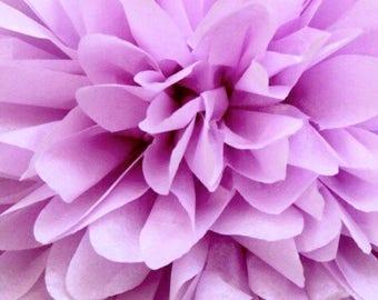 Lilac Tissue pom pom/party poms/birthday pompoms/DIY/Baptism/baby shower/hanging poms/nursery pom pom/pompoms/party decorations
