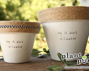 """6"""" Say it Ain't Cilantro » Cilantro Herb Indoor and Outdoor Pot or Planter"""