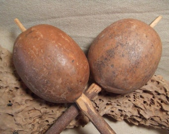 2 Gourd Rattles