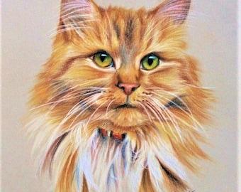 Pastel Pet Portraits