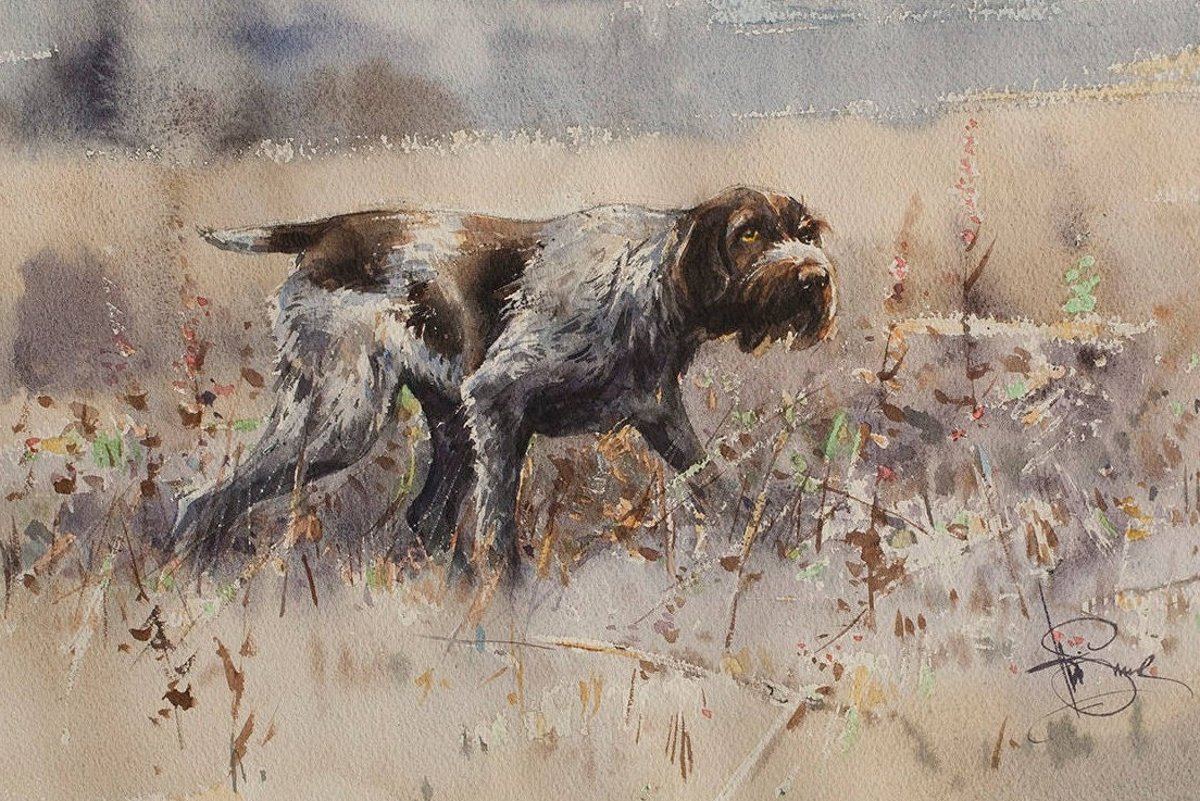 Print of watercolor The fall// German Wirehaired