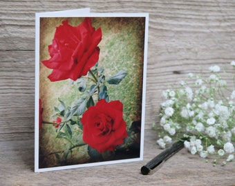 """Red Roses – 5-Card Set – 4.25"""" x 5.5"""" Folded"""