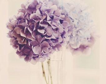 flower photography, hydrangea print, floral bedroom art, purple floral art, floral nursery art, hydrangea picture, hydrangea wall art photos