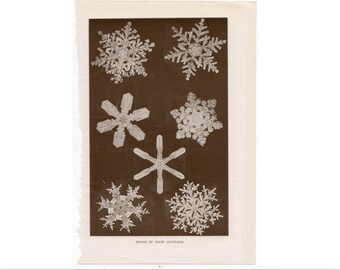 1911 SNOW CRYSTALS print original antique winter weather lithograph - snow flakes