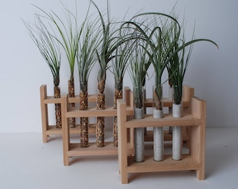Air Plant- Air Plant Terrarium-Terrarium-Test Tube Rack-Gifts for Women-Gifts for Men-Desk Accesory-Office Accessory