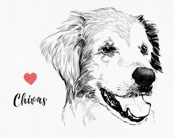 Dog portrait illustration, cat illustration, dog sketch, pet portrait sketch, personalized pet drawing, personalized dog drawing, cat sketch