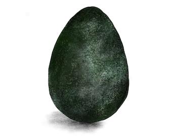Avocado Illustration Print
