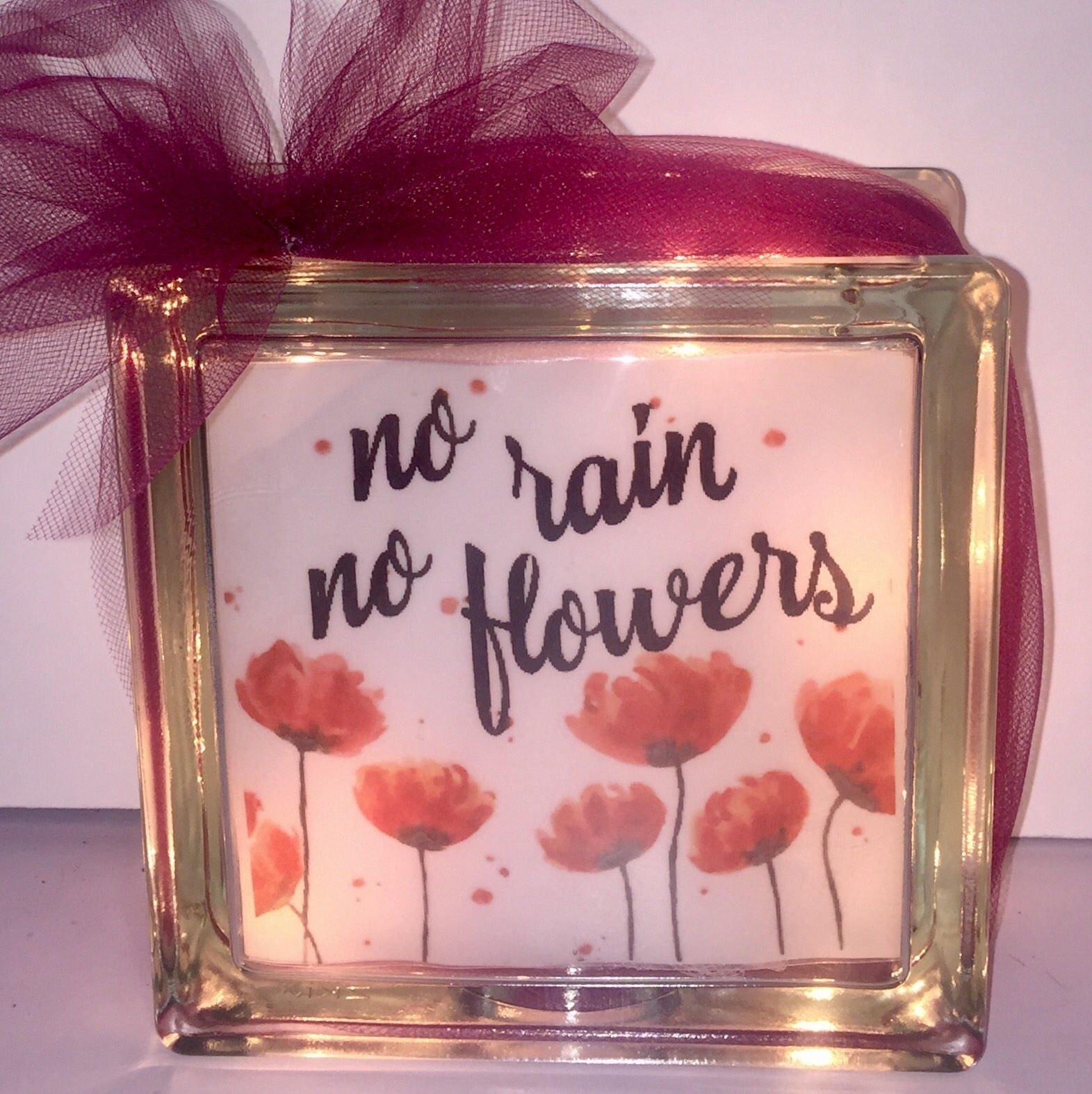 No Rain No Flowers Lighted Glass Block home decor gift for