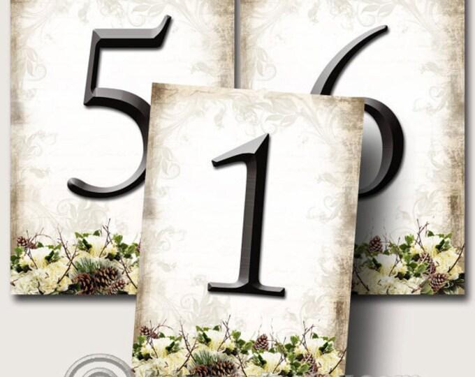 WINTER Wedding, Table Numbers 5x7, Printable Digital Images, Weddings, Parties, Bridal Shower, Baby Shower, Birthday, Seating Numbers