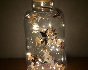 Origami butterfly Twinkle Jar - 1L
