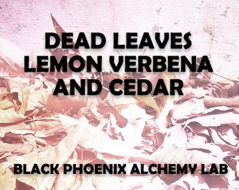 Dead Leaves, Lemon Verbena, and Cedar