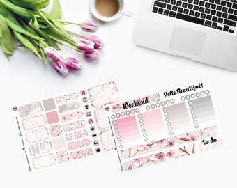 CHERRY BLOSSOM Weekly Set - Planner Stickers CAM00297