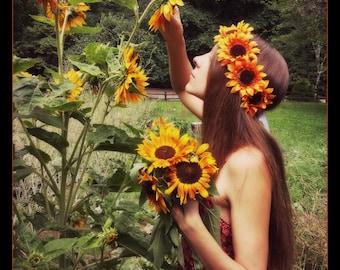 Sunflower headband, sunflower crown, orange sunflower crown, sunflower flowercrown, sunflower flower crown, sunflower festival