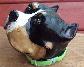 Tricolor pit bull head, tricolor American bully art sculpture, pitbull statue